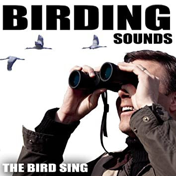 Birding Sounds. The Bird Sing