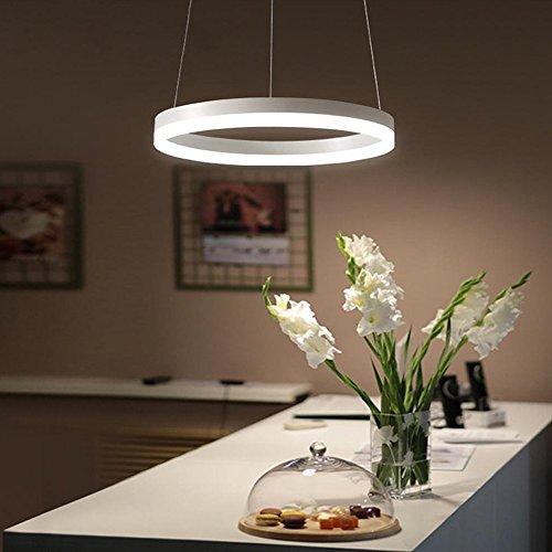 Modern Luxus LED Pendelleuchte Rund Ring Design Eisen Metall Acryl Lampenschirm Höhenverstellbar Hängeleuchte Weiss Elegant Hängelampe Wohnzimmer Büro Kronleuchter Ø40cm 24W Warmes Licht (Ø40cm)