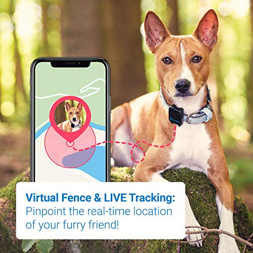 TRACTIVE 3G GPS Tracker for Dogs – Dog Tracking Device with Unlimited Range