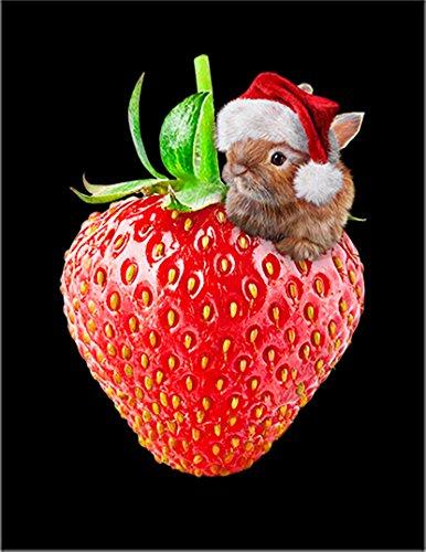 【苺 いちご オレンジ うさぎ】 ポストカード・はがき(黒背景)