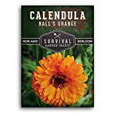 Survival Garden Seeds - Ball's Orange Calendula Seed for Planting -...