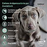 IMG-1 green italy collare antipulci cane