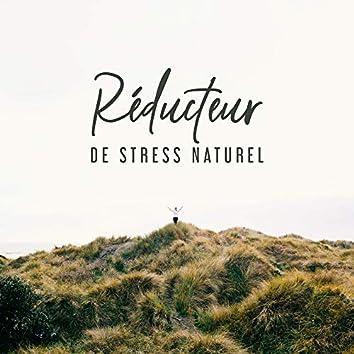 Réducteur de Stress Naturel: Musique qui Aide à Soulager le Stress et la Tension, Vous Détend Profondément et Vous Aide à Vous Détendre
