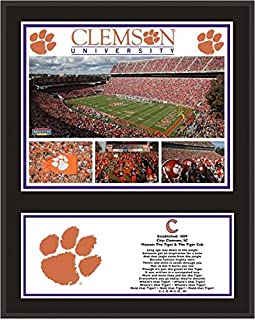 Clemson Tigers 12