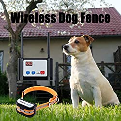 what is the best wireless invisible dog fence