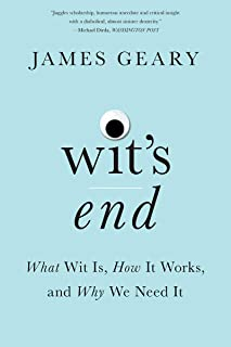 Wit's End: What Wit Is, How It Works, and Why We Need It