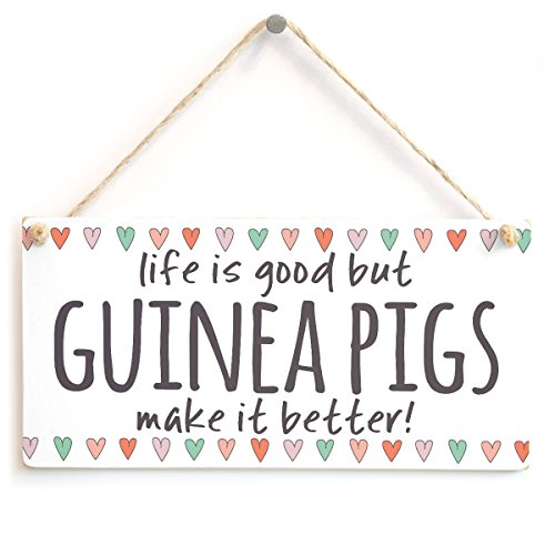"""Meijiafei Life is Good but Guinea Pigs Make it Better! - Home Decor Accessory Gift Sign for Guinea Pig Lovers 10""""x5"""""""