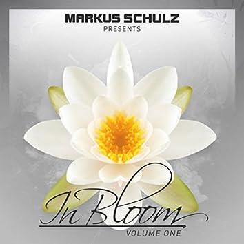 Markus Schulz presents In Bloom EP