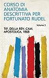 Corso di anatomia descrittiva per Fortunato Rudel Volume 3