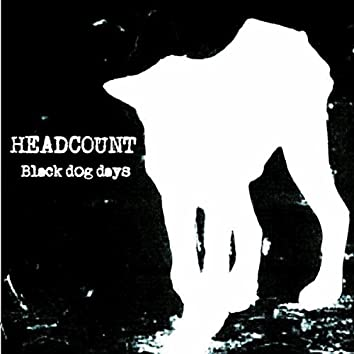 Black Dog Days