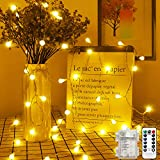 KNONEW 100 LED Globe Lights, 8 Modes 10M/32ft Remote, Battery Powered Fairy Lights Outdoor/Indoor, Garden Lights for Christmas/Patio/Gazebo/Halloween/Bedroom/Party Decorations(Warm White)