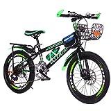 Fitfulvan 22 Inch Mountain Bikes Mechanical Double Disc Brake Mountain Bicycle Full Suspension MTB Bikes,Green