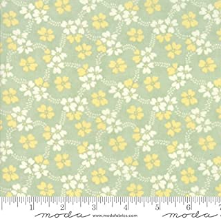 United Notions & Moda Fabrics Fig Tree Quilts Ella and Ollie Quilt Fabric Daisy Rings Style 20302/14 Pond