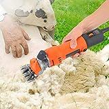 【𝐂𝐡𝐫𝐢𝐬𝐭𝐦𝐚𝐬 𝐆𝐢𝐟𝐭】Tijeras para ovejas Podadoras eléctricas profesionales para la preparación de animales para alpacas de ovejas Llamas y animales grandes de capa gruesa, 6 velocidades Recor