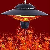 Generies Hanging Outdoor Electric Heater,750W/1500W, Low Noise, Chicken Coop Heater (Black)