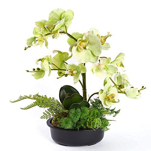 Künstliche Blumen, Simulation der Bonsai-Phalaenopsis-Orchidee mit Topf für Heim-Dekoration und Ornamente grün