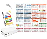 Scrubnotes - Medical Reference ID Badge Cards - 13 Card Set with Pocket Medical Abbreviation Booklet for Doctors and Nurses