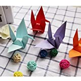 50 piezas de grullas de papel de origami hechas a mano, utilizadas para decoración de bodas, pancartas de fiesta, suministros para fiestas de cumpleaños de San Valentín