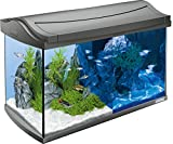 Tetra AquaartLED Acquario, 60 L, Antracite