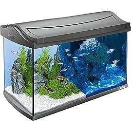 Tetra AquaArt Discovery Line LED Aquarium-Komplett-Set