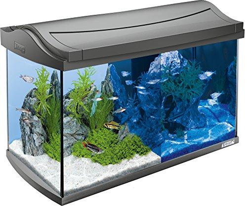 Tetra GmbH -  Tetra AquaArt Led