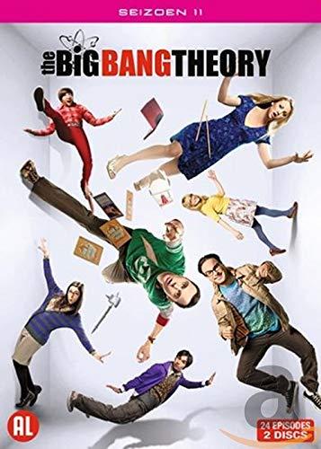 The Big Bang Theory - Saison 11 [DVD] [Import]