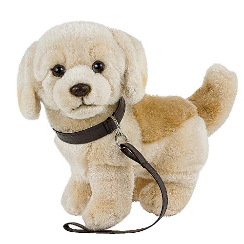 Teddys Rothenburg Kuscheltier Golden Retriever/Labrador hell mit Leine 23 cm blond Plüschhund Stofftier Plüschtier Kinder Baby Spielzeug by Uni-Toys