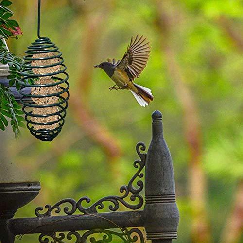 Wild Bird Pet