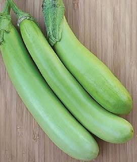 louisiana long green eggplant