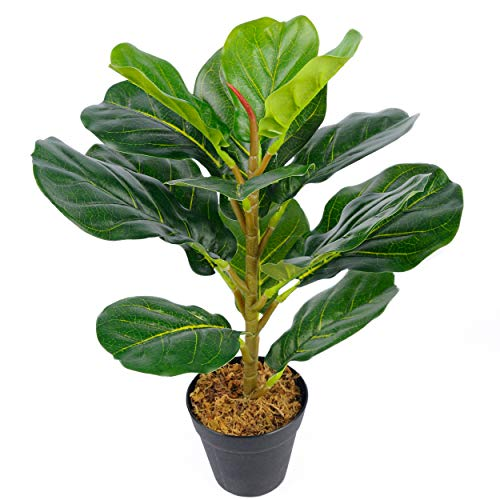 Toopify 20' Fake Plants, Mini Fiddle Leaf Fig Tree Artificial Ficus Potted Plant for Indoor and Outdoor Desk Decor