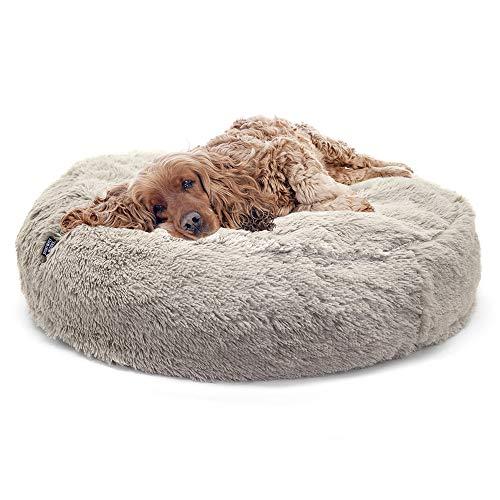 SPORT PET Designs Large Luxury Waterproof Pet Bed