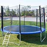 DUOJI 14FT Trampoline with Basketball Hoop Trampoline with Trampoline Accessories: Trampoline Ladder, Safety Trampoline Net, Spring Cover Padding