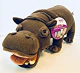 Mibia The Hippopotamus Discovery Channel Explore Your World