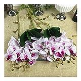 JiaQinHe Restos Ramas 1 Set = 5 + Tallos de Flores Orquídea 2, Tacto Verdadero del látex Flores Artificiales Flores orquídea Mariposa decoración del hogar de la Boda Nunca