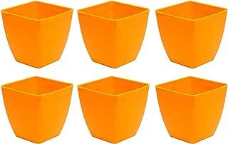 Novicz Sra-pot-daisy4-6pcs-orange Plastic Indoor Plant Pot, Orange (Pack of 6)