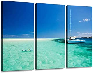 3 Panel snorkeling in shallow water off the catamaran maldives stock Canvas Wall Art Decoration Modern Landscape Picture Unframed Artwork for Home Decor Print Canvas-30x60cm