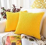 HETOOSHI Juego de 2 Pana Suave Cuadrado Grueso Decorativa Fundas de Almohada,Poliéster Duradero Decoración para Sofá Dormitorio Coche (Amarillo, 50 x 50 cm)