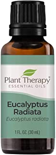 Plant Therapy Eucalyptus Radiata Essential Oil 30 mL (1 oz) 100% Pure, Undiluted, Therapeutic Grade