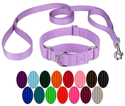 Country Brook Design - Martingale Heavyduty Nylon Dog Collar and Double Handle Leash - Lavender - Medium