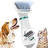 Asciugacapelli per Cane, Spazzola per Cani e Gatti, Spazzola e Asciugatrice 2 in 1, Asciugatrice Portatile da Viaggio, velocità Regolabile
