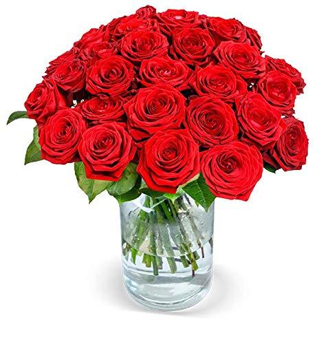 20 red Naomi Rosen, Premiumrosen, bis zu 80 Blütenblätter pro Stil, 7 - Tage - Frischegarantie, perfekte Geschenkidee, versandkostenfrei bestellen