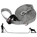 AYADA Laisse pour Chien Dressage 10m - Longue Nylon Dog Training Lead - Professionnel Entrainement Dog Leash - pour Petits à Gros Taille Chien(Gris)