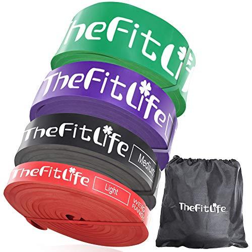 TheFitLife トレーニングチューブ 懸垂チューブ 懸垂補助 トレーニングバンド 筋トレチューブ - 天然ラテックス製 懸垂アシスト フィットネスチューブ ヨガ リハビリ ストレッチ 収納ポーチ・日本語説明書付 (4色セット)