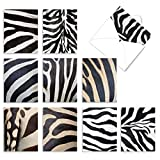 10 Striped 'Zebra Zeal' Thank You Cards with Envelopes 4 x 5.12 inch, Closeup Photos of Zebra Stripes and Patterns, Boxed Thank You Note Cards, Bulk Set of Greeting Cards M3032