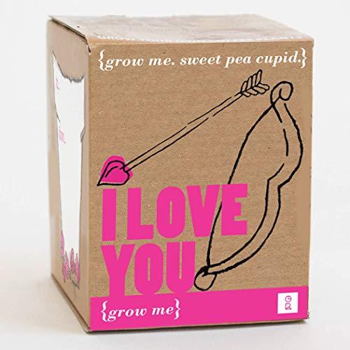 Mags - Coffret Cadeau Saint-Valentin - Grow Me, I Love You - Graines de Pois Doux Cupidon (à faire pousser soi-même)