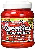 Amix Creatina Monohidratada