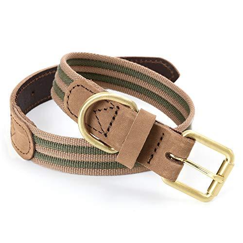 Mile High Life   Premium Canvas Leder-Hundehalsband   Metall-Pin Schnallenring Hundehalsband   Echtes Ledergürtel Halsband   für mittlere/Große Hunde (L, Grün)