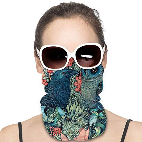 Thin & Cozy Face Masks, Men Women Dust Proof Breathable Neck Gaiter, Cosmic Egg Elf Bird Crow and Owl Creative Hand Drawn Cartoon Sweatband Neck Buff for Cycling Fishing