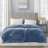 Beautyrest Heated Plush Elect Electric Blanket with 20 Heat Level Setting Controllers Equip with Secure Comfort Technology and 10 Hours Auto Shut Off, King: 90x100, Sapphire,BR54-0661
