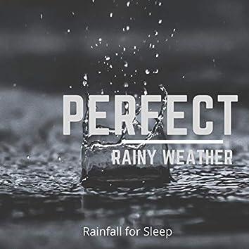 Perfect Rainy Weather
